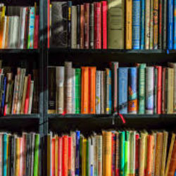 The Great Big Summer Reading List
