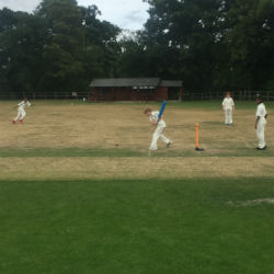 Year 3 and Year 4 House Cricket Competition