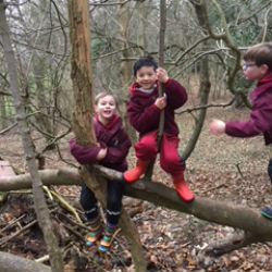 Year 2 went to the woods to check on their Stickmen!