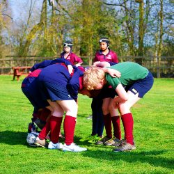 House Rugby Festival