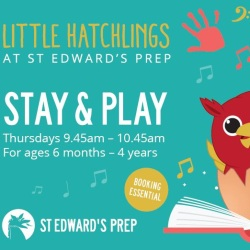 Little Hatchlings Stay & Play